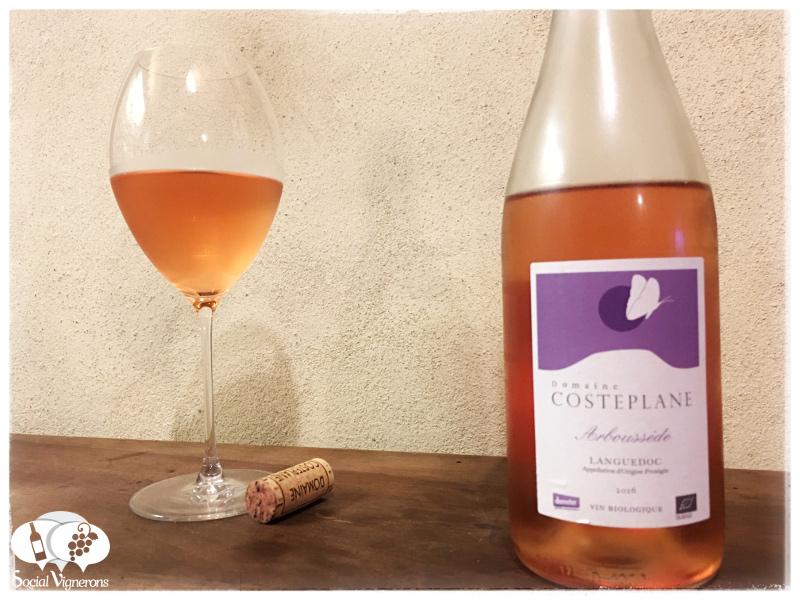 2016 Domaine Costeplane Arboussède Languedoc Organic Rosé, France
