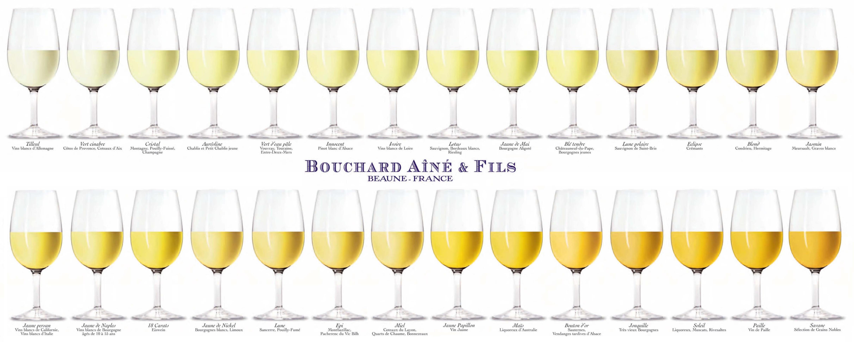 Wine Color – Complete Visual Guide - Social Vignerons 3fc568301