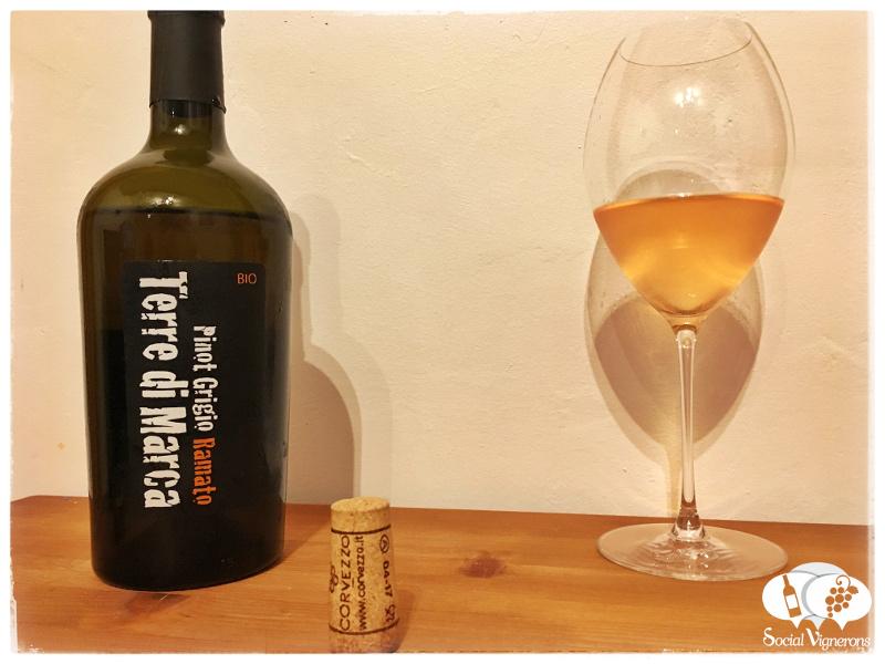 Tasty & Organic Italian Pinot Grigio Ramato (Pink Wine)