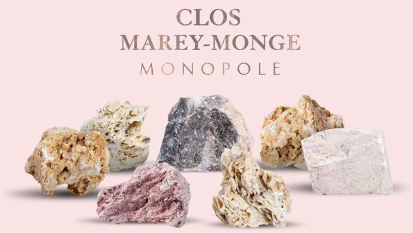 2016 Château de Pommard Clos Marey-Monge Monopole, Top Burgundy Pinot Noir