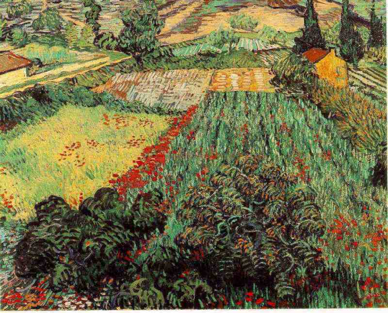 gogh11.poppies[1].jpg