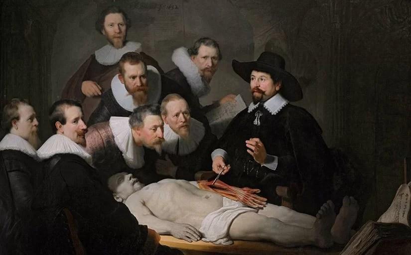 Anatomia para iniciantes: assista aulas de anatomia grátis com dissecações reais e modelos vivos despidos