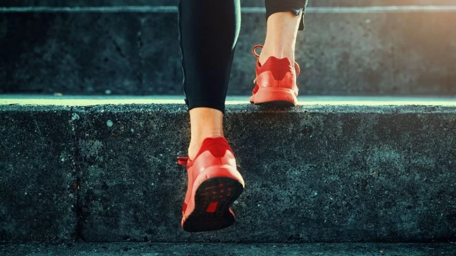 https://i2.wp.com/socientifica.com.br/wp-content/uploads/2019/04/neuroscience-leg-exercise-brain-nervous-system-health.jpg?resize=940%2C528&ssl=1