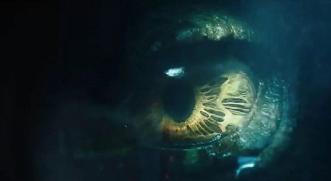 Mineiros em busca de pedras preciosas encontram antigo monstro marinho