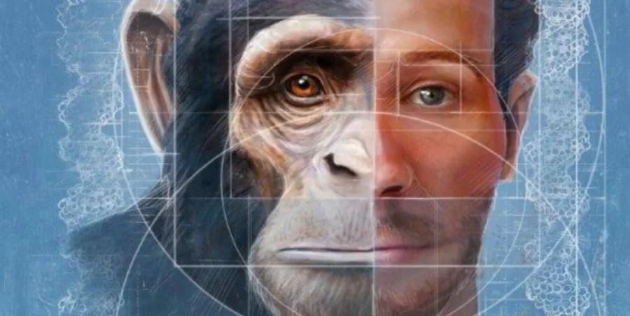 https://i2.wp.com/socientifica.com.br/wp-content/uploads/2019/08/híbrido-humano-macaco.jpg?resize=900%2C452&ssl=1