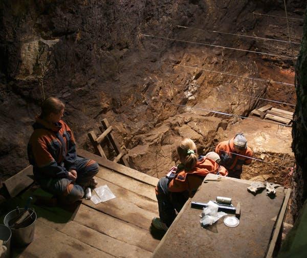 A escavação de 2010 na Galeria Leste da Caverna Denisova, onde foram descobertas as antigas espécies de hominídeos conhecidos como Denisovanos. Entre Viola. Departamento de Antropologia, Universidade de Toronto , CC BY-ND