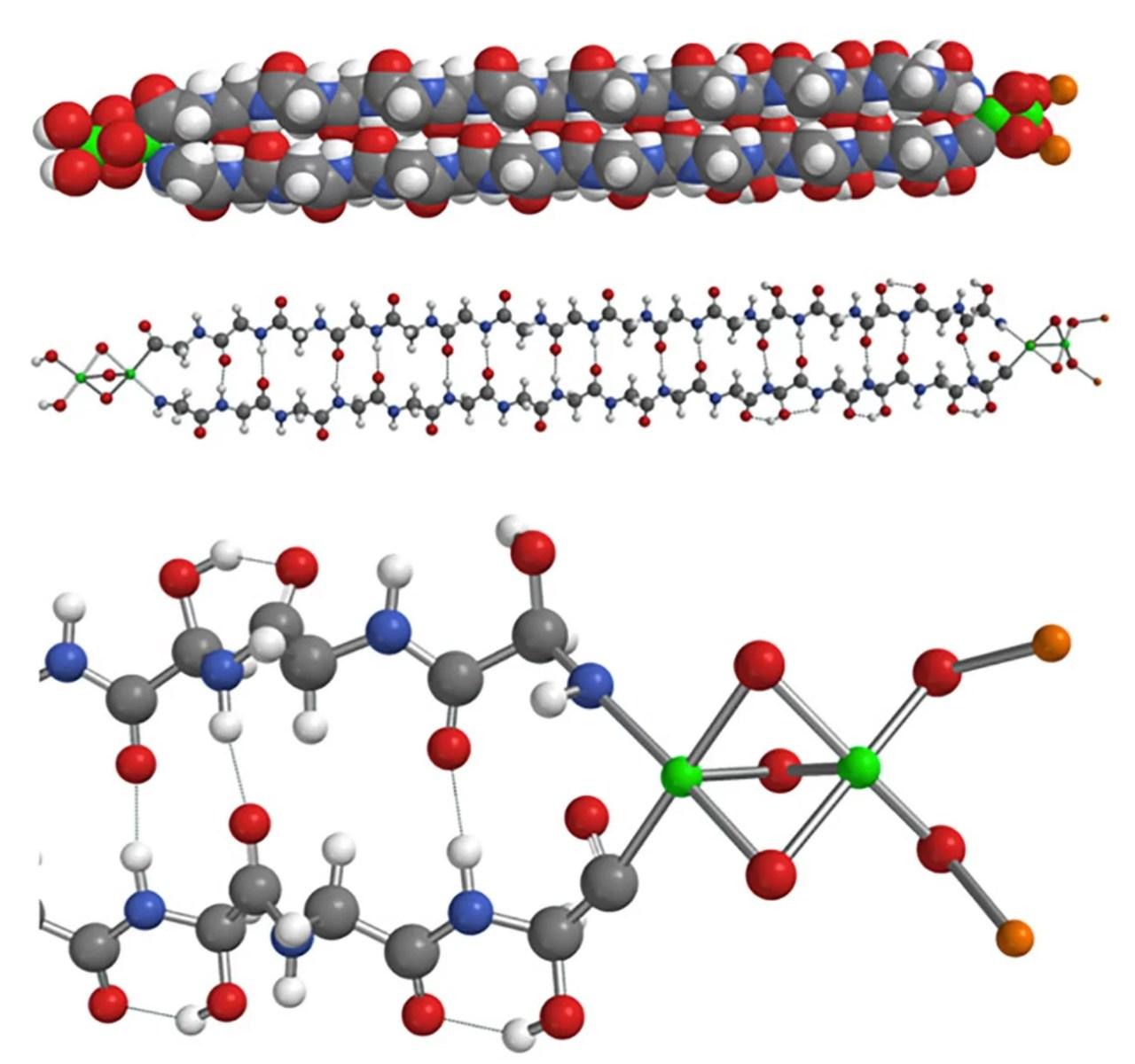 Pesquisadores encontraram proteína em um meteorito. Na imagem está o modelo da molécula de hemolitina 2320 após minimização de energia MMFF. Superior: no modo de preenchimento de espaço; Centro: bola e taco; Parte inferior: visão ampliada das terminações de ferro, oxigênio e lítio. Branco = H; laranja = Li; cinza = C; azul = N; vermelho = O e verde = Fe. As ligações de hidrogênio são mostradas por linhas pontilhadas. (Créditos: Malcolm. W. McGeoch, Sergei Dikler, Julie EM McGeoch)