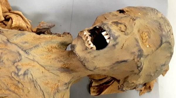 mistério da múmia que grita