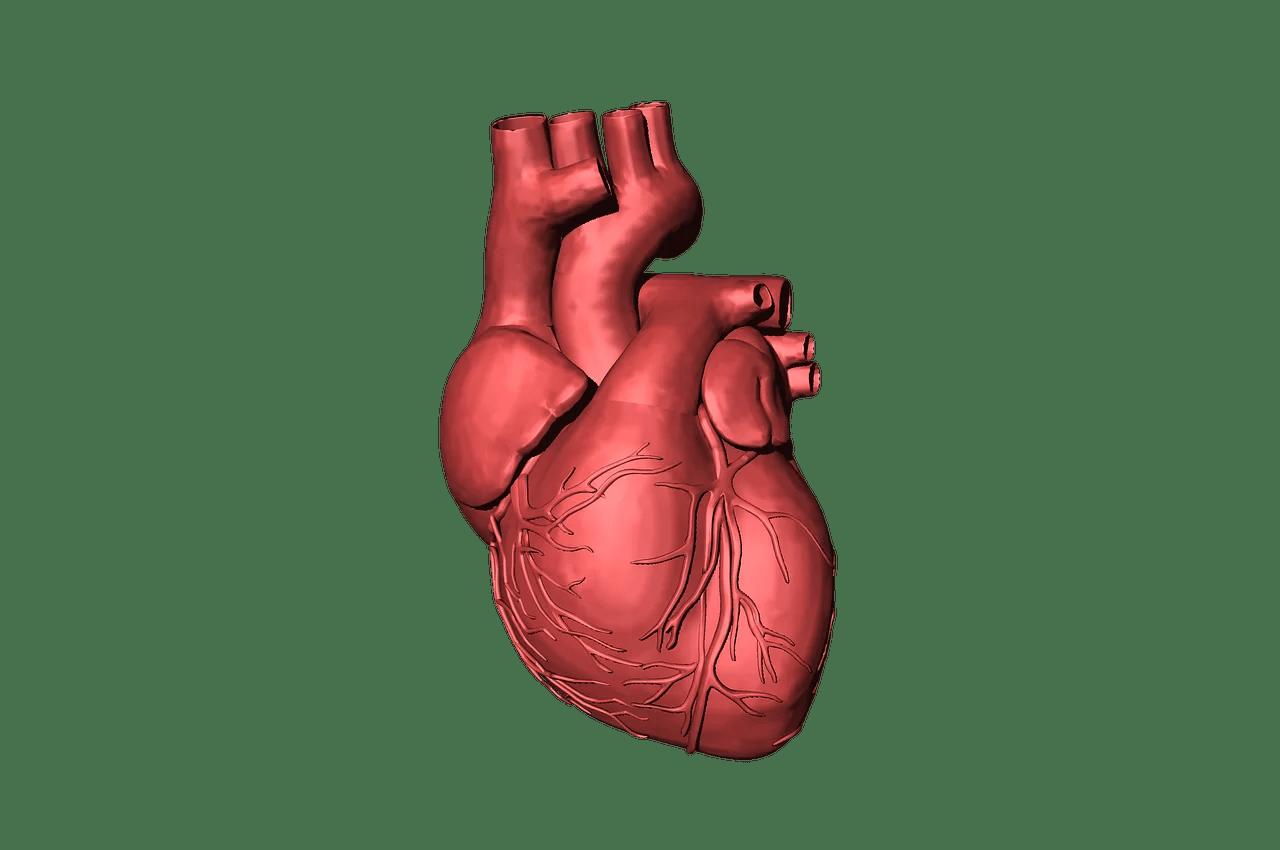 coração e coronavírus