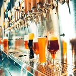 Business plan bar a bières