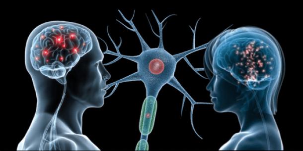 Risultati immagini per neuroni specchio