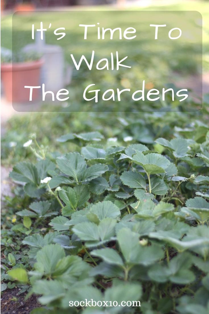 It's Time To Walk The Gardens sockbox10.com