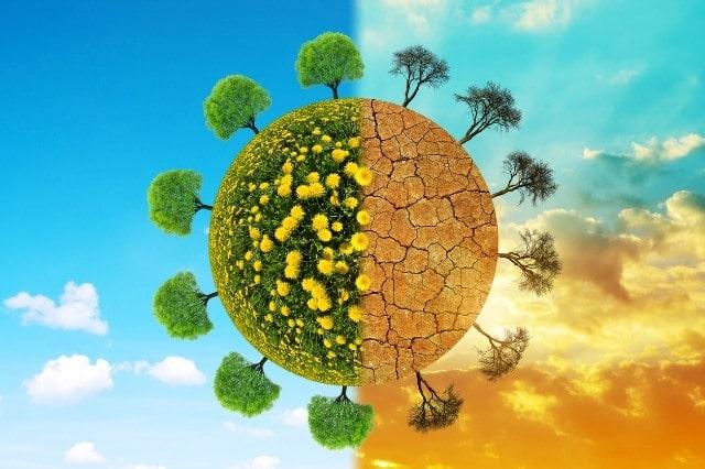 Cambiamento climatico e abitudini green per uno stile di vita ecosostenibile