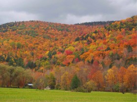On our drive into Vermont we couldn't believe the colours. We eventually pulled into the parking lot of a hardware store and took our first Vermont photo.