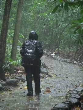 It's not called a rainforest for nothing. Let's just say that not all of our hikes are dry, and that some of our possessions definitely smell funny.