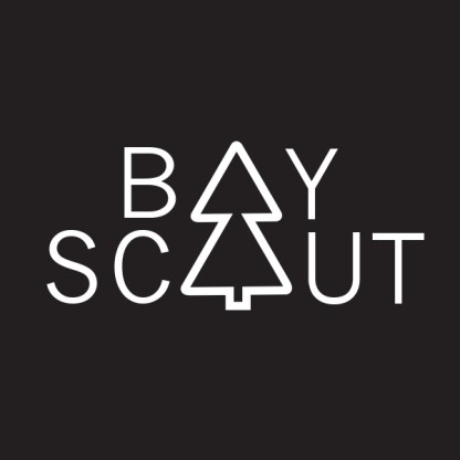 BoyScout.2