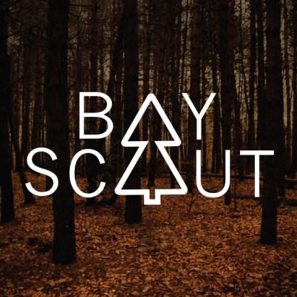 BoyScout.3.Woodbackdrop