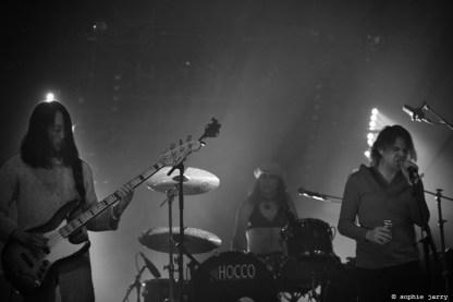 ARIEL PINK Pitchfork Festival Paris. 30 October 2015