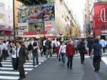Definition of city dweller - What it is, Meaning and Concept