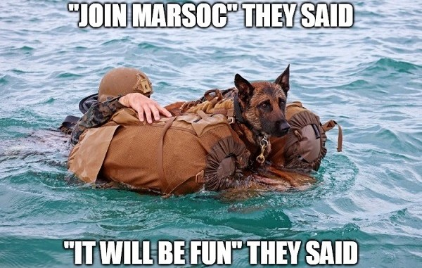 MARSOC MWD Marops