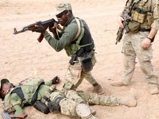 Cabo Verdean Armed Forces Flintlock 2020