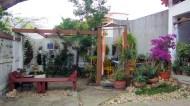 Claudettes garden