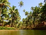 The green lagoon at Cova
