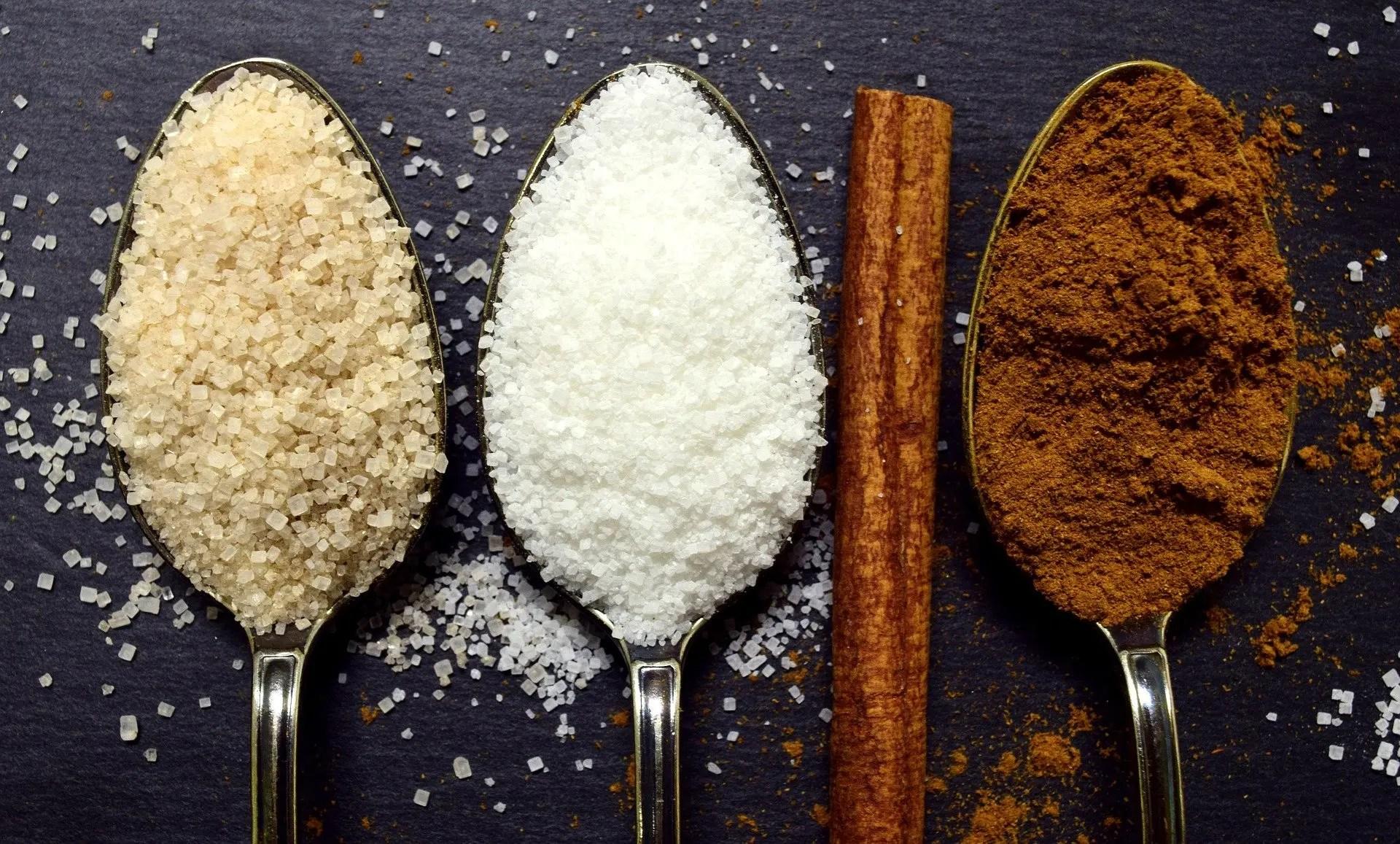 You are currently viewing Welche Zuckerersatzstoffe sind gesund? Die TOP 10 Alternativen