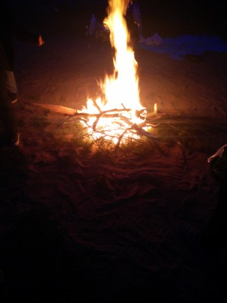 A bonfire in the night