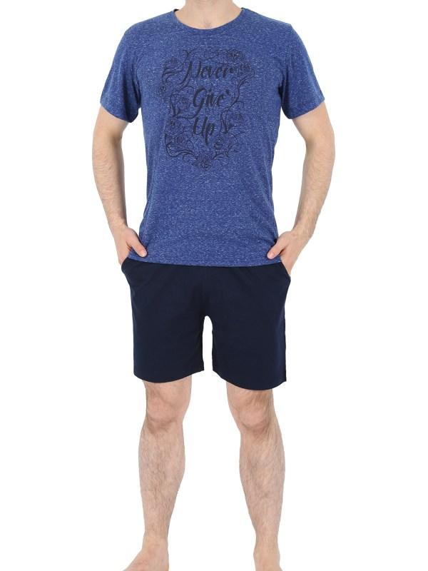 Пижама мужская шорты 4120954908