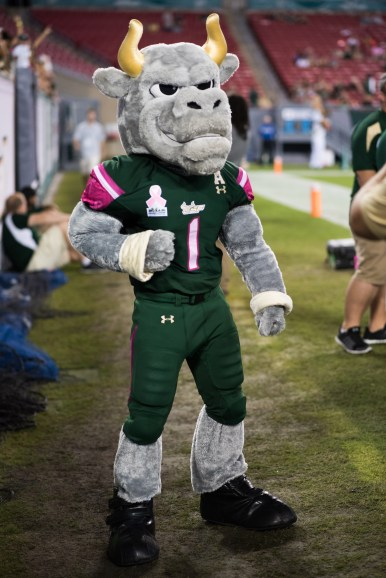 80 - UConn vs USF 2016 - USF Mascot Rocky the Bull (4016x6016)