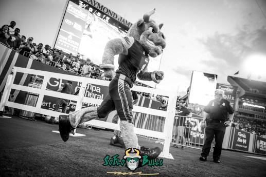 26 - Illinois vs. USF 2017 - USF Rocky the Bull B&W by Dennis Akers | SoFloBulls.com (6016x4016)