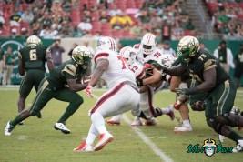 72 - Stony Brook vs. USF 2017 - USF QB Quinton Flowers by Dennis Akers | SoFloBulls.com (5069x3384)