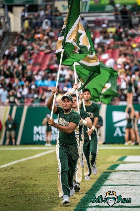 79 - Stony Brook vs. USF 2017 - USF Flags in Endzone by Dennis Akers | SoFloBulls.com (3261x4885)
