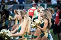 43 - USF vs. Houston 2017 - USF Cheerleaders by Dennis Akers | SoFloBulls.com (6016x4016)