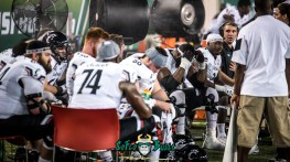 85 - Cincinnati vs. USF 2017 - Cincinnati Team on the Sideline by Dennis Akers | SoFloBulls.com (6016x3384)