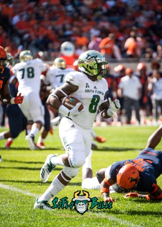 29- USF vs. Illinois 2018 - USF WR Tyre McCants by Dennis Akers | SoFloBulls.com (2784x3897)