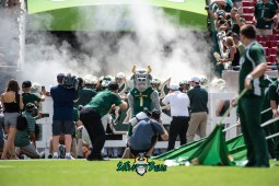 7 - Georgia Tech vs. USF 2018 - USF Mascot Rocky D. Bull in front of Team exiting Tunnel with Smoke by Dennis Akers   SoFloBulls.com (5913x3947)