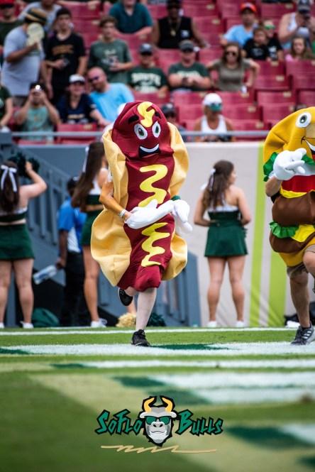 82 - Georgia Tech vs. USF 2018 - USF Football Fan Hot Dog Contest Mascot by Dennis Akers   SoFloBulls.com (4016x6016)