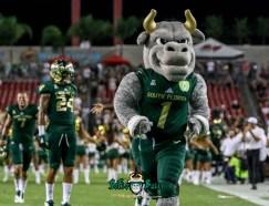 17A - USF vs. ECU 2018 - USF Mascot Rocky D. Bull by Will Turner | SoFloBulls.com (4156x3183)