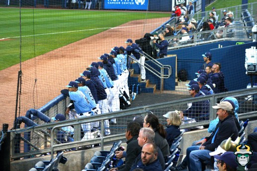 12 - South Florida Bulls vs. Tampa Bay Rays Baseball 2019 - Rays Coaching Staff in Dugout by Tim O'Brien | SoFloBulls.com (3888x2592)