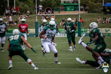 102 - USF TE Chris Carter Spring Game 2019 by David Gold 1113 (6000x4000)
