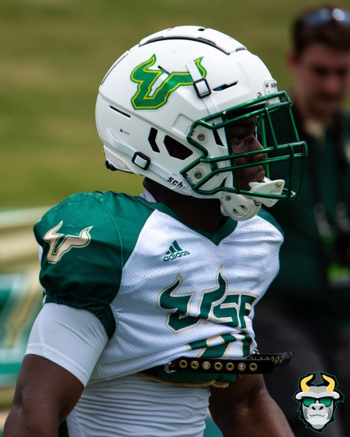 111 - USF RB Johnny Ford Spring Game 2019 by Matthew 1399 IG (2632x3290)