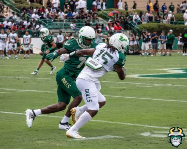 62A - USF WR Jernard Phillips Mike Hampton Spring Game 2019 by David Gold 0937 (4497x3598)