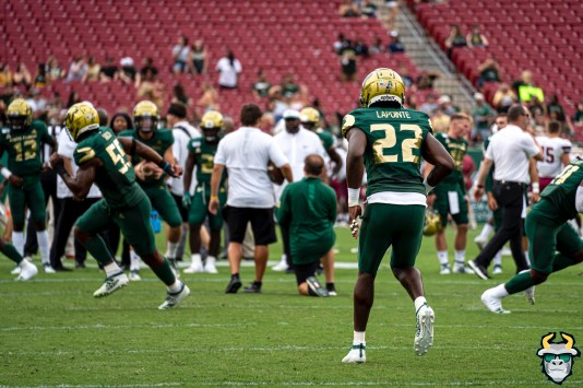 20 - USF vs S.C. State 2019 - Mekhi LaPointe by David Gold DRG09401