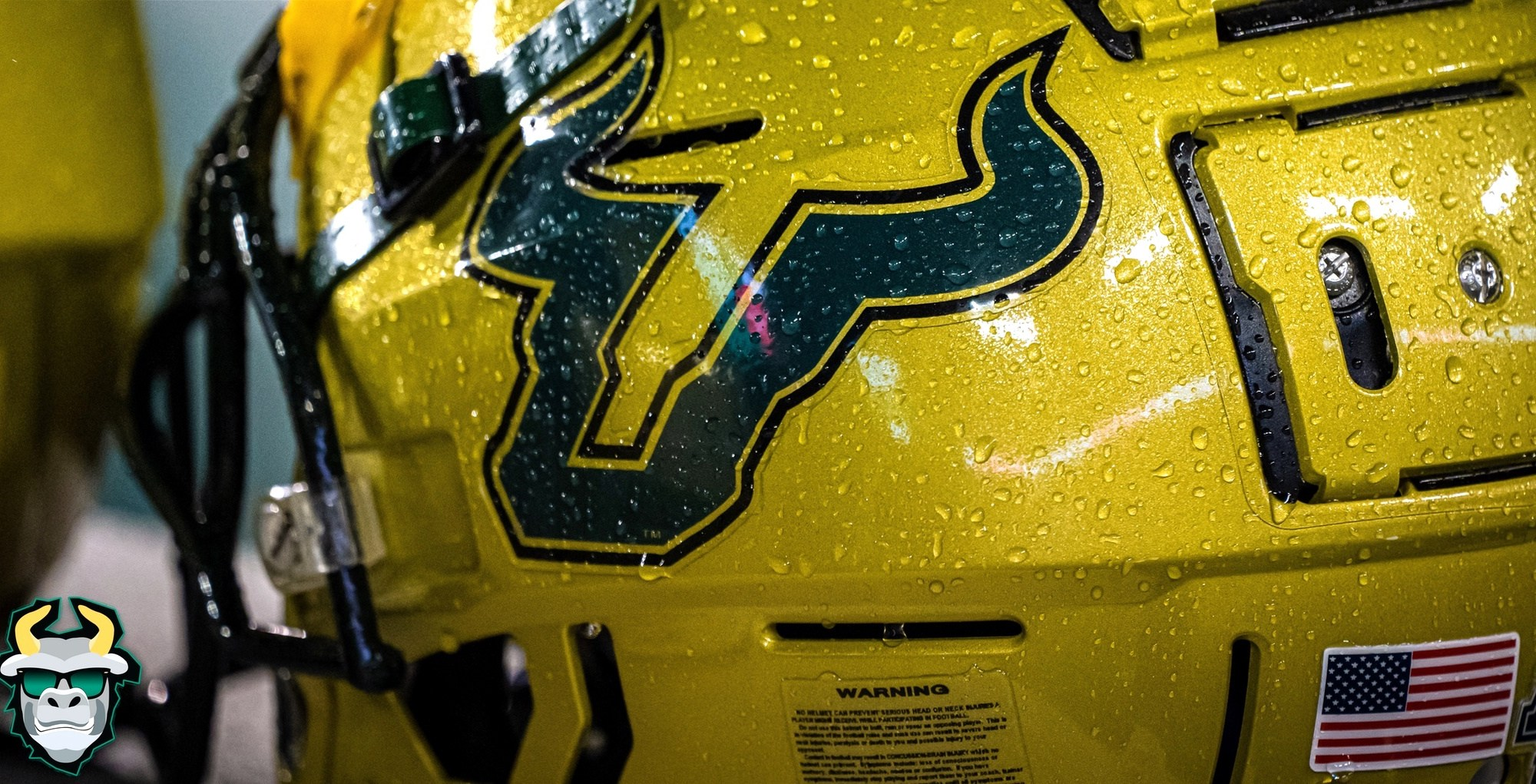 Wisconsin vs. USF Football 2019 Photo Album