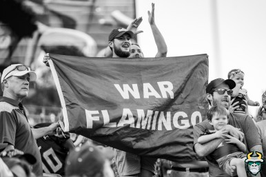 106 - BYU vs USF 2019 - Fans with War Flamingo Flag in Stands by David Gold - DRG01281