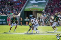 67 - BYU vs USF 2019 - Patrick Macon by David Gold - DRG00677