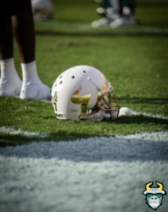 21 - Memphis vs. USF 2019 - White Chrome Big U Logo Helmet by David Gold - DRG03540