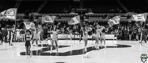 28 - St. Leo vs South Florida Men's Basketball 2019 - USF Sundolls B&W by David Gold - DRG03119